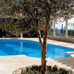 Pavimentazione per piscine Ardoise